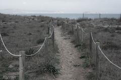 Camins 3 (Francesc Farran) Tags: girona playas plajadepals