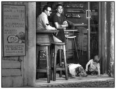 a dog`s life (kurtwolf303) Tags: city italien people bw italy dog rome roma topf25 bar topf50 topf75 europe italia 500v20f streetphotography eu menschen hund stadt sw topf100 rom hdr 800views omd lokal gaststtte 900views strase photomatixpro urbanlifeinmetropolis 750views 1500v60f 1000v40f 250v10f monochromefineart lovelycity unlimitedphotos micro43 microfourthirds olympusem5