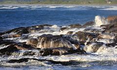 Many Waterfalls (Tones Corner) Tags: blue sea water rocks surf waves charleston coastal coastline westcoast nzscene nzbeauty