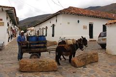 "Burros cargando en Villa de Leyva • <a style=""font-size:0.8em;"" href=""http://www.flickr.com/photos/78328875@N05/23744483076/"" target=""_blank"">View on Flickr</a>"