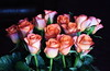 DSC_4247 Bouquet of Orange Roses (PeaTJay) Tags: nikond750 reading lowerearley berkshire macro micro closeups gardens indoors nature flora fauna plants flowers bouquetofroses rose roses rosebuds