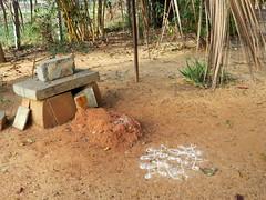 IMG_3065 (mohandep) Tags: mamm birding lake bangalore madivala karnataka nature wildlife t