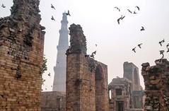 Ruins of Qutb Minar Delhi (Johannes R.) Tags: india indian delhi olympus e420 qutb minar ruin birds bird flying broken lost place temple mosque building architecture tower