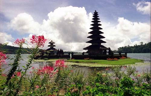Bedugul - Bratan - Bali - 1976(3)