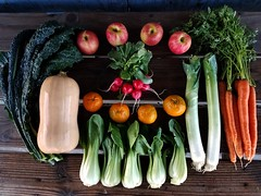 Suzie's CSA box, Week of Dec. 19 - 25