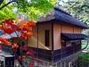 autumn (hamapenguin) Tags: autumn fall garden kanagawa yokohama 横浜 三渓園 紅葉 apple iphone