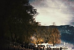 Upside down (PattyK.) Tags: ioannina giannena giannina epirus ipiros greece grecia griechenland hellas ellada europe europeanunion mycity whereilive lake lakeside lakefront reflections pamvotida ioanninalake lakepamvotida december 2012 winter trees ιωάννινα γιάννενα ελλάδα ήπειροσ βαλκάνια ηπόλημου όμορφηπόλη αντανάκλαση λίμνη παμβώτιδα λίμνηπαμβώτιδα λίμνηιωαννίνων νερό δίπλαστηλίμνη μώλοσ δεκέμβριοσ παραλίμνιο