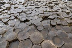 Giant's Causeway: Honey Comb are Basalt columns