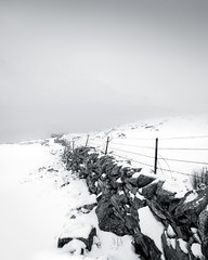 Wire (jellyfire) Tags: cwmidwal landscape landscapephotography sonnartfe55mmf18za sony sonya7r sonyfe70200mmf40goss sonysonnartfe35mmf28zalens winter barbedwire blizzard fence leeacaster snowdonia snowstorm snw stone wales wall white wwwleeacastercom