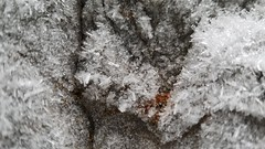 Frozen Ice, Banff, Alberta Canada (renedrivers) Tags: rchan415 renedrivers winter banffnationalpark snow mountain