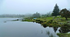 Moody Nyanga morning, Connemara Lakes (lukejulian263) Tags: zimbabwe nyanga lake mist mountains panasonic fz1000 lumix landscape