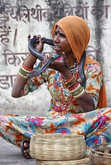 l'incantatrice di serpenti (mat56.) Tags: ritratto portrait ritratti portraits donna woman persone people colori colors serpente snake snakes charmer incantatrice serpenti chaniabalaji rajasthan india asia indiana antonio romei mat56
