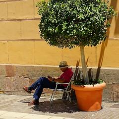 Just a Little bit of shadow (jo.misere) Tags: shadow plant man hat reading spain schaduw malaga spanje hoed bloempot lezen