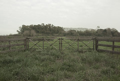 (niamagica) Tags: sky naturaleza nature field rural landscape grey gris countryside cloudy paisaje cielo land campo tranquera nublado