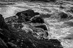 surf, rocks, Lobster Cove,  Monhegan, Maine, Nikon D40, nikon nikkor 55mm f-3.5, 8.28.15 (steve aimone) Tags: ocean blackandwhite monochrome reflections rocks surf waves maine monochromatic atlanticocean monhegan monheganisland seacost primelens lobstercove nikond40 nikonprime nikonnikkor55mmf35