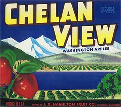 """Chelan View • <a style=""""font-size:0.8em;"""" href=""""http://www.flickr.com/photos/136320455@N08/21284817719/"""" target=""""_blank"""">View on Flickr</a>"""