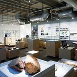 大学既存施設の展示空間へのコンバージョンの写真