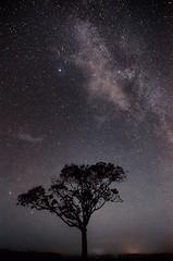DSC_7319 (SelimAzad) Tags: sky nature beauty night star earth galaxy universe milkyway