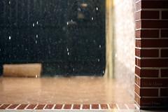 Da de Lluvia (Gopro Jerez) Tags: espaa canon de la lluvia andalucia cadiz frontera jerez eos450d