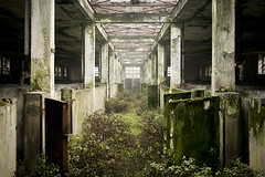 Abandoned food industry, somewhere in Italy. (Stefano Perego Photography) Tags: italy abandoned industry nature architecture design italia factory decay exploring perspective hallway urbanexploration decadence pigsty urbex foodindustry stepeg