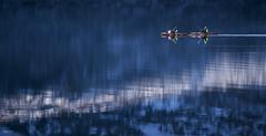 Kayaking II - D8D_4484 (Viggo Johansen) Tags: blue lake snow mountains water norway reflections kayak kayaking telemark haukeli stvatn