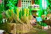 FAZENDINHA DO TULIO 2015 FINAL-31 (agencia2erres) Tags: aniversario 1 infantil festa ano fazenda fazendinha