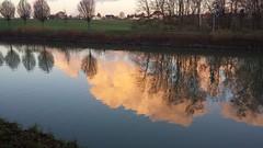 Reflection (rocknrolltheke) Tags: trees reflection nature water clouds germany deutschland evening abend wasser natur wolken nrw bume spiegelung dortmund reflektion dortmundemskanal 852 supershot 37365