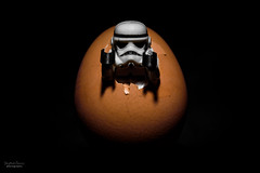 The Force Awakens (steved_np3) Tags: born starwars force lego stormtroopers birth egg stormtrooper awake