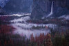 Flow (Explored) (Sapna Reddy Photography) Tags: bridalveil waterfall mist fog valley foliage trees mountains sierra yosemite california nationalpark nps