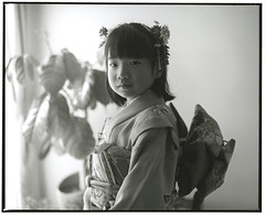 HANA (Tamakorox) Tags: daughter family girl portrait art japan japanese kimono asia light shadow pleasure love shichigosan 娘 日本 日本人 光 影 喜び 愛 着物 七五三 film analoguecamera b&w mamiyarb67prosd kodaktmax400 fujibrovarigradewp