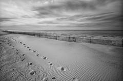 Footprints (mswan777) Tags: beach snowfence footprints winter deserted lake michigan great lakes black white ansel landscape nikon d5100 sigma 1020mm pattern cloud sky