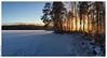 Diffuse Light Through Trees (Mika Latokartano) Tags: sunlight sun diffusedlight trees ice lake tracksonsnow winter finland suomi