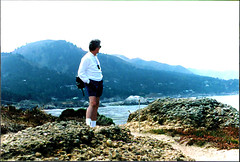 Looking Out Over Point Lobos (Bill in DC) Tags: ca california film 35mm kodacolor smp3 pch pacificcoasthighway bigsur 1996