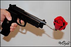 pistol~1 (Orphen 5) Tags: gunflowers gunrose red redrose gun gunshootingoutrose gunshootingoutflowers pistol9mm pistol 9mm tumblr