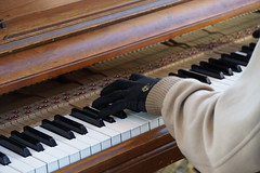 Keys (Let Ideas Compete) Tags: pikeplacemarket market publicmarket piano playing music streetmusic musician streetmusician