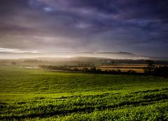 Up With The Crack (daedmike) Tags: scotland perthshire mist fog haar hills dawn sunrise field crops daybreak morning
