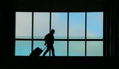 Transit (Pi-F) Tags: aéroport passerelle toulouse contrejour homme valise transport bagage ombre carreaux vitre ciel passager