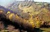 last remants of autumn (Ron Layters) Tags: cressbrookdale yellow autumnal trees sunlight lookingdown light whitepeak autumn litton wardlow dale valley peakdistrict derbyshire england unitedkingdom slidefilmthenscanned slide transparency flickrfly fujichrome velvia leica r62 leicar62 ronlayters