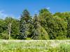 Duke Farms-6142806-2 (myobb (David Lopes)) Tags: dukefarms hillsborough nj newjersey nature olympus em1 omd