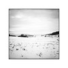 Oichten Tal (cardijo) Tags: austria österreich salzburg landscape landschaft snow schnee winter analog film ilford delta100 rodinal rolleiflex tessar carlzeiss nikon coolscan