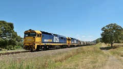 8126+8160 lead a loaded Pacific National grain train through Wingen, destined for the port of Newcastle.