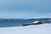 cachée (mimu_13) Tags: europe n norvège norway tromsfylke tromso tromsø neige snow snø maison maisonrouge redhouse nx500 samsungnx hiver winter vinter