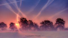 Münsterland am Morgen (mr.wohl) Tags: münsterland ahaus sonnenaufgang dawn sonnenuntergang dusk bäume silhuette sonne nebel mist blue sky himmel