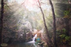 Cascada del rio de la miel (PictureJem) Tags: rio cascada arboles naturaleza