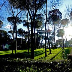 Parco di Villa Borghese, Roma (pom.angers) Tags: panasonicdmctz30 february 2017 villaborghese rome roma lazio italia italy europeanunion trees sunrays flare 100 150