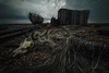 end of days (stocks photography.) Tags: michaelmarsh photographer dungeness endofdays floryblack duma whitstable beach seaside coast