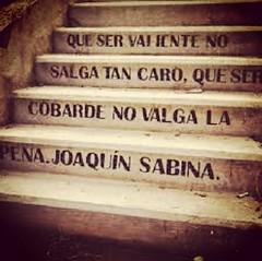 La vida está llena de escaleras que suben y bajan, te llevan y te traen, te quitan y te ponen pero nunca dejan de estar ahí para que leas lo que con ellas descubrirás.