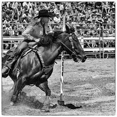 Poles (Jos Pockett) Tags: horse ontario canada race nikon women exeter western rodeo rider poleracing pfaction15