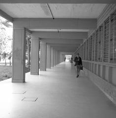 Vigilados y educados (Felipe Cárdenas-Támara) Tags: rolleiflexautomat6x6modelk4a rolleiflexjune1951march1954 rolleiflextlr zeissjenatessar3575 kodaktmax expiredfilm analoguephotography buildings medellín felipecardenasphotography