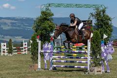 DSC04278_s (AndiP66) Tags: springen dubenmoos solothurn derby 2014 august pferd horse schweiz switzerland kantonsolothurn cantonsolothurn concours wettbewerb horsejumping springreiten pferdespringen samstag saturday 22august2015 2015 cantonofsolothurn contest equestrian sports pferdesport sport sony sonyalpha 77markii 77ii 77m2 a77ii alpha ilca77m2 slta77ii sony70400mm f456 sony70400mmf456gssmii sal70400g2 andreaspeters biberist ch